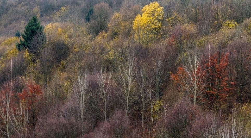 Jeseň  vo  Vlkolínci